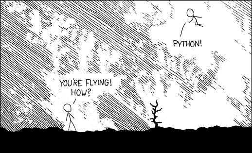 fly-python